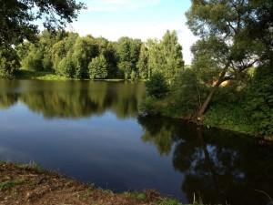 sheglyatevo-fish5